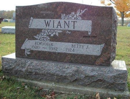 WIANT, BETTY J - Champaign County, Ohio | BETTY J WIANT - Ohio Gravestone Photos