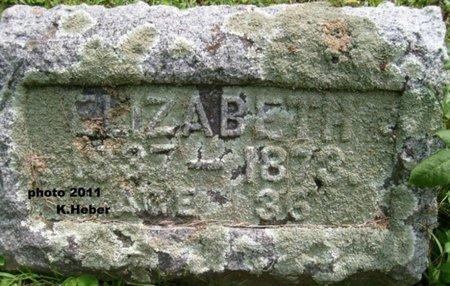 WIANT, ELIZABETH - Champaign County, Ohio | ELIZABETH WIANT - Ohio Gravestone Photos