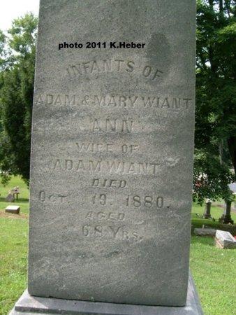 WIANT, INFANTS - Champaign County, Ohio | INFANTS WIANT - Ohio Gravestone Photos