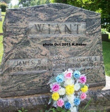 WIANT, JAMES BUCHANON - Champaign County, Ohio | JAMES BUCHANON WIANT - Ohio Gravestone Photos