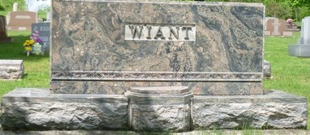 WIANT, MONUMENT - Champaign County, Ohio | MONUMENT WIANT - Ohio Gravestone Photos
