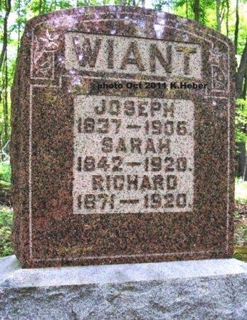 WIANT, RICHARD P - Champaign County, Ohio   RICHARD P WIANT - Ohio Gravestone Photos