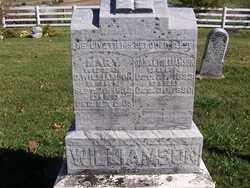 WILLIAMSON, MARY - Champaign County, Ohio | MARY WILLIAMSON - Ohio Gravestone Photos