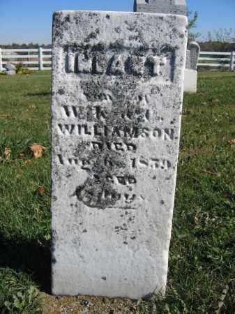 WILLIAMSON, INFANT - Champaign County, Ohio | INFANT WILLIAMSON - Ohio Gravestone Photos