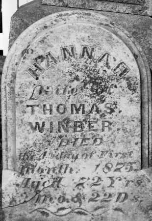 WILDMAN WINDER, HANNAH - Champaign County, Ohio | HANNAH WILDMAN WINDER - Ohio Gravestone Photos