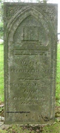 ZERCKLE, MARY - Champaign County, Ohio | MARY ZERCKLE - Ohio Gravestone Photos