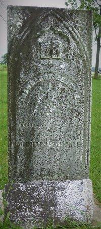 ZERCKLE, MARGARET - Champaign County, Ohio | MARGARET ZERCKLE - Ohio Gravestone Photos