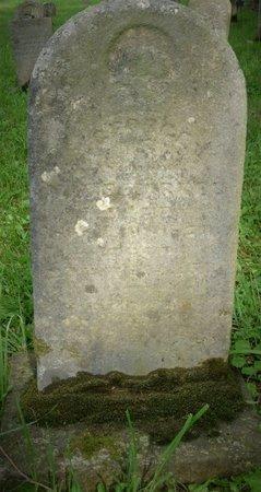 ZIRKLE, GEORGE - Champaign County, Ohio | GEORGE ZIRKLE - Ohio Gravestone Photos