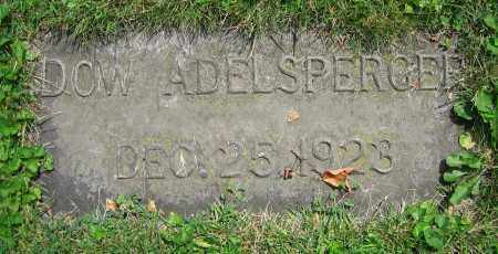 ADELSPERGER, DOW - Clark County, Ohio | DOW ADELSPERGER - Ohio Gravestone Photos