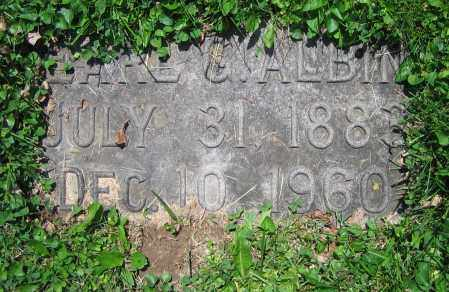 ALBIN, EARL G. - Clark County, Ohio | EARL G. ALBIN - Ohio Gravestone Photos