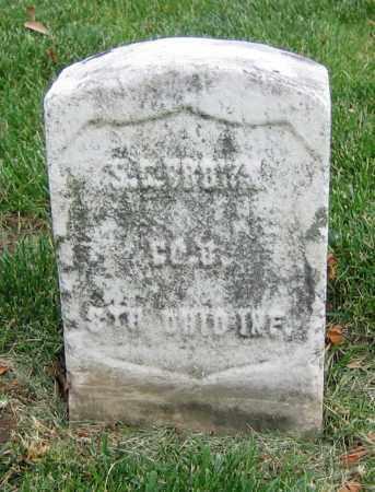 BROWN, S.S. - Clark County, Ohio   S.S. BROWN - Ohio Gravestone Photos