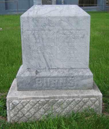 BURNS, MARY - Clark County, Ohio | MARY BURNS - Ohio Gravestone Photos