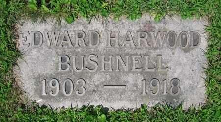 BUSHNELL, EDWARD HARWOOD - Clark County, Ohio | EDWARD HARWOOD BUSHNELL - Ohio Gravestone Photos