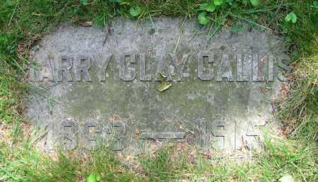 CALLIS, HARRY CLAY - Clark County, Ohio | HARRY CLAY CALLIS - Ohio Gravestone Photos