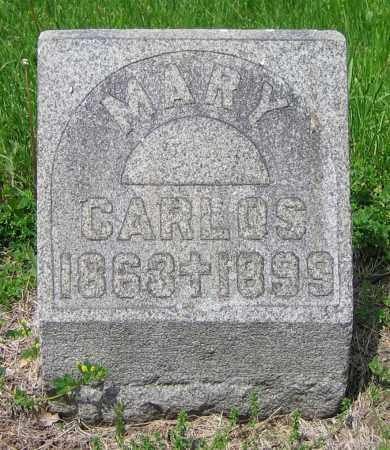 CARLOS, MARY - Clark County, Ohio | MARY CARLOS - Ohio Gravestone Photos