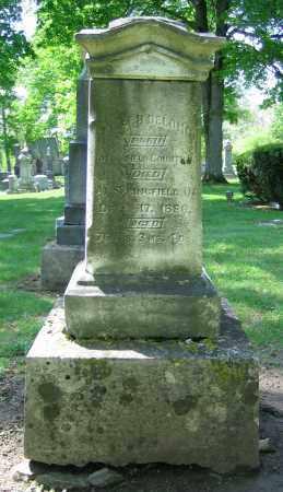 DELONG, JOSEPH - Clark County, Ohio   JOSEPH DELONG - Ohio Gravestone Photos