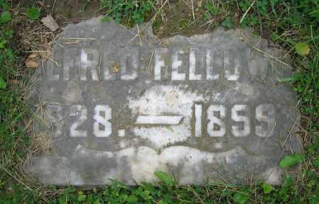 FELLOWS, ALFRED - Clark County, Ohio | ALFRED FELLOWS - Ohio Gravestone Photos