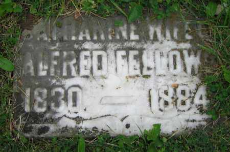 FELLOWS, CATHARINE - Clark County, Ohio | CATHARINE FELLOWS - Ohio Gravestone Photos