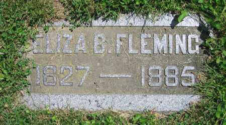 FLEMING, ELIZA B. - Clark County, Ohio | ELIZA B. FLEMING - Ohio Gravestone Photos