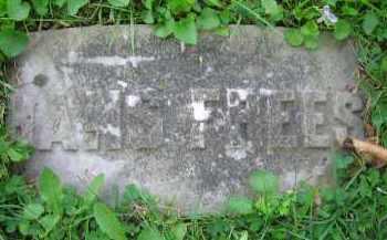 FREES, HANS - Clark County, Ohio | HANS FREES - Ohio Gravestone Photos