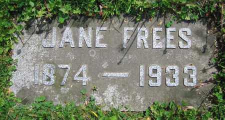 FREES, JANE - Clark County, Ohio | JANE FREES - Ohio Gravestone Photos