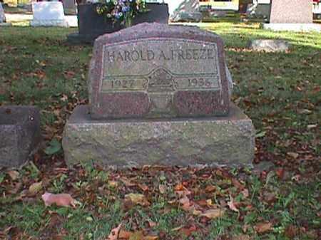 FREEZE, HAROLD ARTHUR - Clark County, Ohio   HAROLD ARTHUR FREEZE - Ohio Gravestone Photos