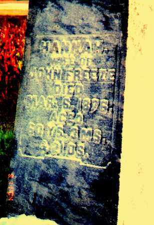 FREEZE, HANNAH - Clark County, Ohio | HANNAH FREEZE - Ohio Gravestone Photos