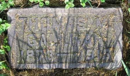 GALLIVAN, THOMAS M. - Clark County, Ohio   THOMAS M. GALLIVAN - Ohio Gravestone Photos