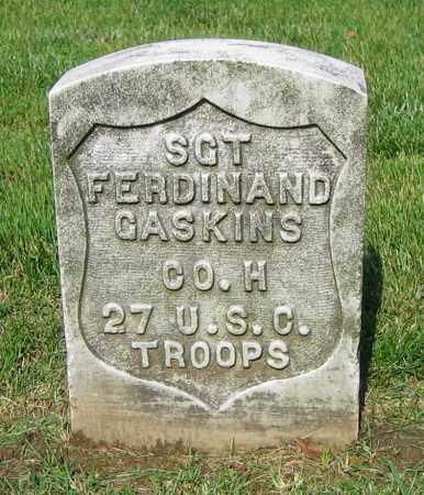 GASKINS, FERDINAND - Clark County, Ohio | FERDINAND GASKINS - Ohio Gravestone Photos