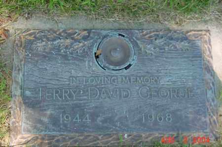 DAVID GEORGE, TERRY - Clark County, Ohio | TERRY DAVID GEORGE - Ohio Gravestone Photos