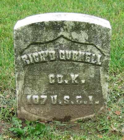 GURNELL, RICH'D - Clark County, Ohio | RICH'D GURNELL - Ohio Gravestone Photos