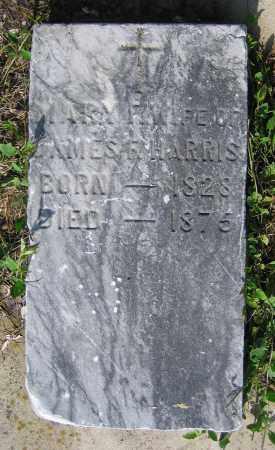 HARRIS, MARY F. - Clark County, Ohio | MARY F. HARRIS - Ohio Gravestone Photos