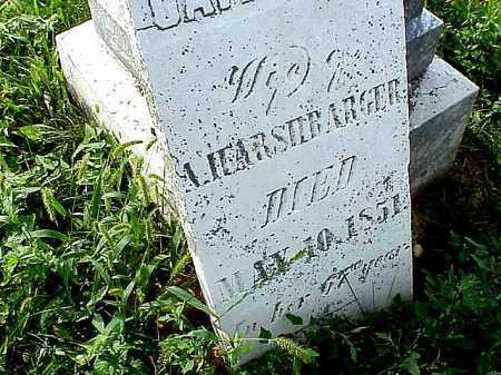 HARSHBARGER, CATHERINE - Clark County, Ohio   CATHERINE HARSHBARGER - Ohio Gravestone Photos