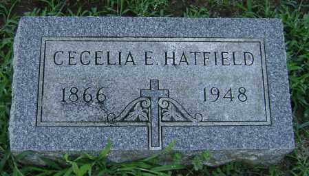 HATFIELD, CECELIA - Clark County, Ohio | CECELIA HATFIELD - Ohio Gravestone Photos