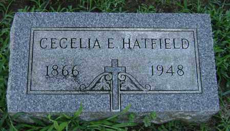 HATFIELD, CECELIA - Clark County, Ohio | CECELIA HATFIELD - Ohio Gravestone Photos
