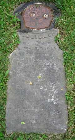 IRWIN, LOUISA B. - Clark County, Ohio | LOUISA B. IRWIN - Ohio Gravestone Photos