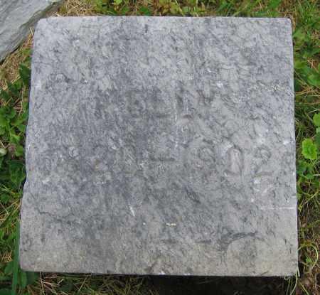 KELLY, CATHRINE - Clark County, Ohio | CATHRINE KELLY - Ohio Gravestone Photos