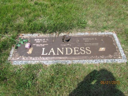 LANDESS, DONALD E - Clark County, Ohio | DONALD E LANDESS - Ohio Gravestone Photos