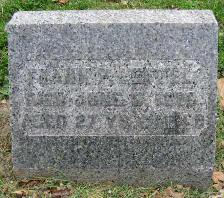 LEFFEL, FRANK P. - Clark County, Ohio   FRANK P. LEFFEL - Ohio Gravestone Photos