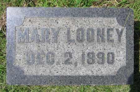 LOONEY, MARY - Clark County, Ohio   MARY LOONEY - Ohio Gravestone Photos