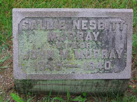 NESBITT MURRAY, SALLIE - Clark County, Ohio | SALLIE NESBITT MURRAY - Ohio Gravestone Photos