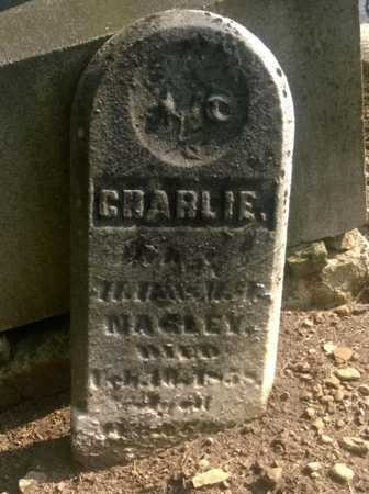 NAGLEY, CHARLIE - Clark County, Ohio | CHARLIE NAGLEY - Ohio Gravestone Photos