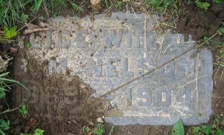 NELSON, ALICE - Clark County, Ohio | ALICE NELSON - Ohio Gravestone Photos