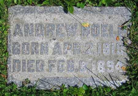 NOELP, ANDREW - Clark County, Ohio | ANDREW NOELP - Ohio Gravestone Photos