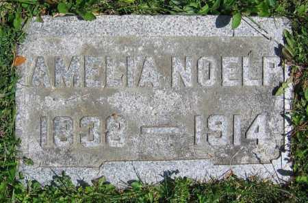 NOELP, AMELIA - Clark County, Ohio | AMELIA NOELP - Ohio Gravestone Photos