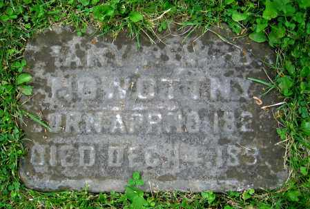 NOWOTTNY, MARY - Clark County, Ohio | MARY NOWOTTNY - Ohio Gravestone Photos