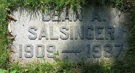 SALSINGER, JEAN A. - Clark County, Ohio | JEAN A. SALSINGER - Ohio Gravestone Photos