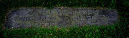 SCHEERSCHMIDT, THEODORE E. - Clark County, Ohio | THEODORE E. SCHEERSCHMIDT - Ohio Gravestone Photos