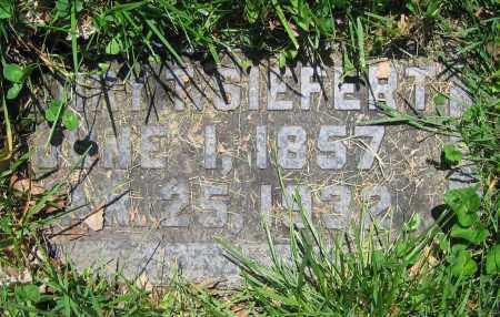 SIEFERT, HENRY T. - Clark County, Ohio | HENRY T. SIEFERT - Ohio Gravestone Photos