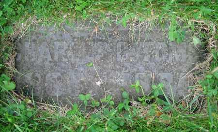 TOMS, CHARLES C. - Clark County, Ohio   CHARLES C. TOMS - Ohio Gravestone Photos